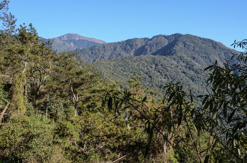鐵本山步道(H 1725 m)東南望關山、鐵本山 5