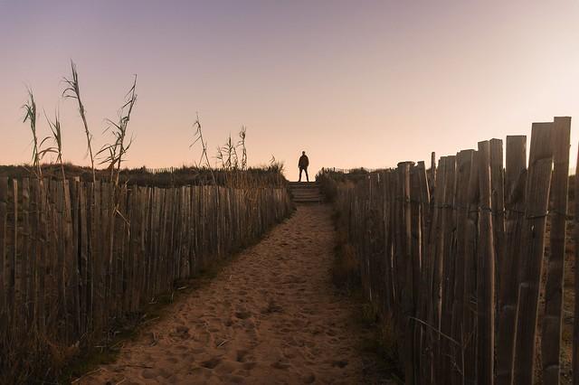 Le chemin des Orpellières