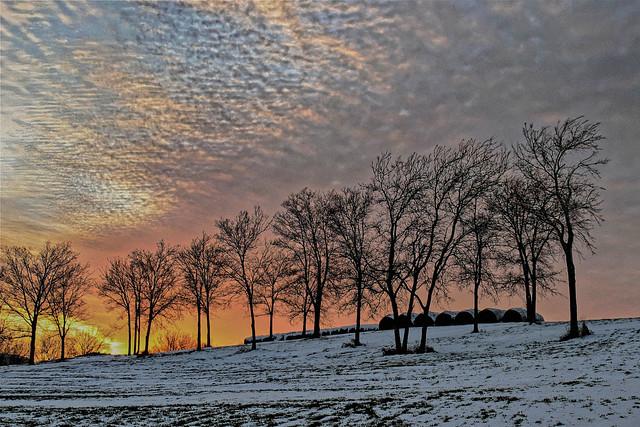 winter hay at sunset