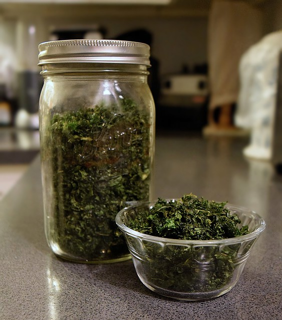 Healthy Homemade Kale Chips!