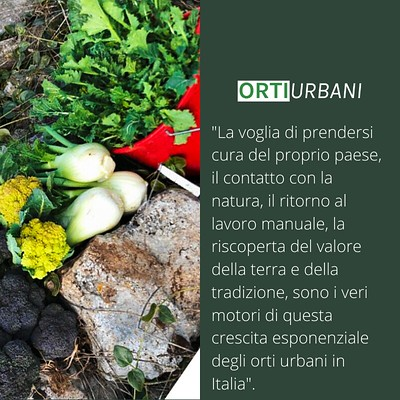 orti-urbani-prodigio