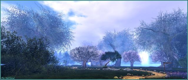 Unicorn Forest Sanctuary