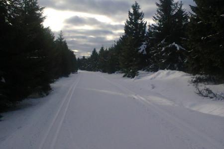 Na horách je inverze, na nový sníh se stále čeká