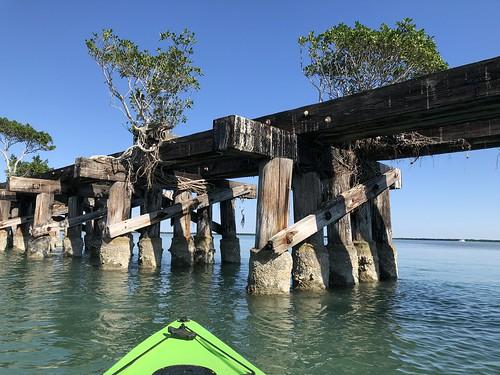 boca grande gulf coast florida gasparilla island sunny kayak rail tree root beyondhue