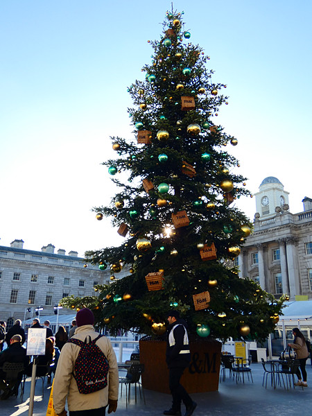 somerset house tree