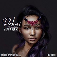New release - sienna horns