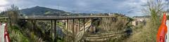 El puente de Miraflores (en euskera, Larreagaburu zubia)