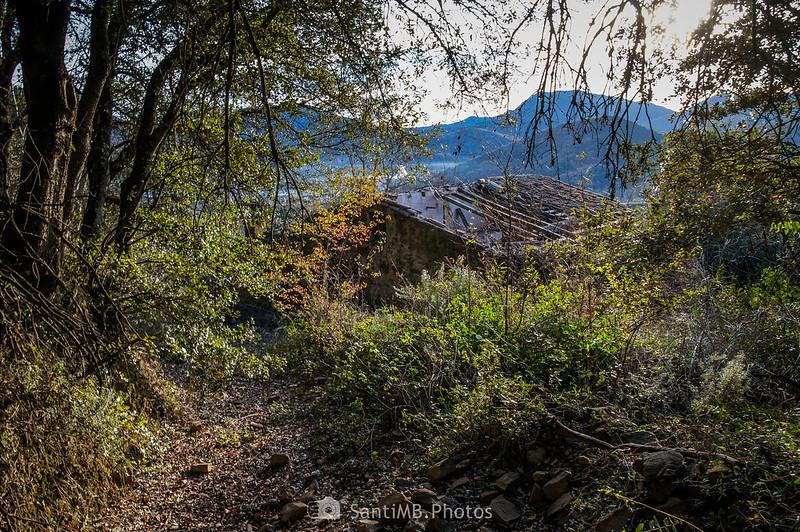 Parte trasera de Pererols desde el sendero del bosque