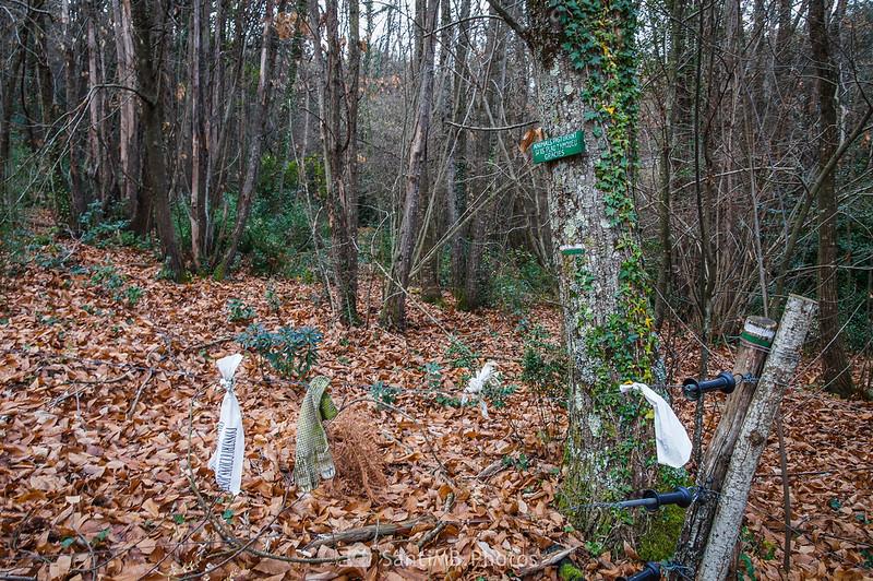 Alambrada en sendero a Sant Joan les Fonts