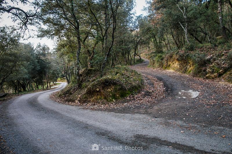 Camí de Can Pererols