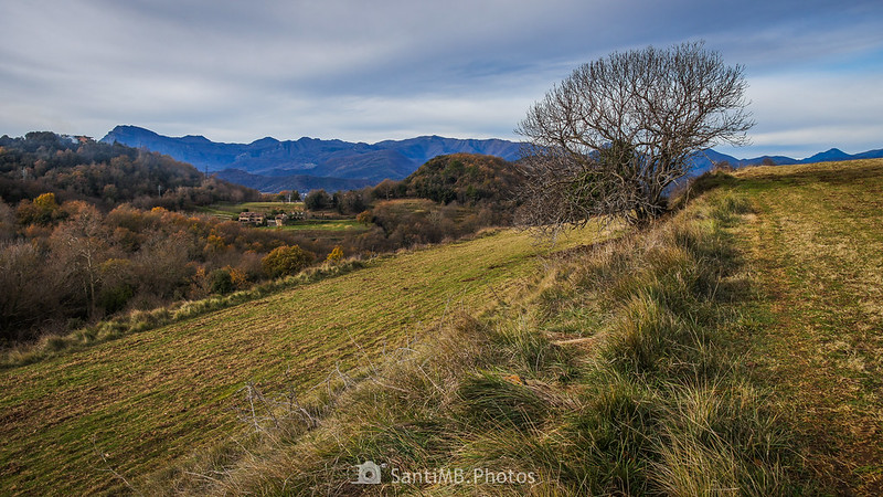 El Puigsacalm y la Serra de Santa Magdalena desde el Pla de Cal Cairat