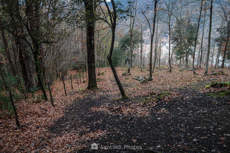 Descenso hacia Sant Joan les Fonts