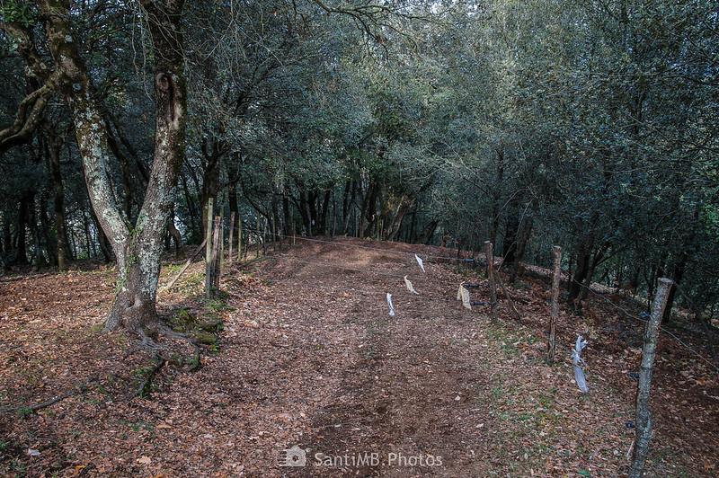 Alambrada en el camino a Sant Joan les Fonts