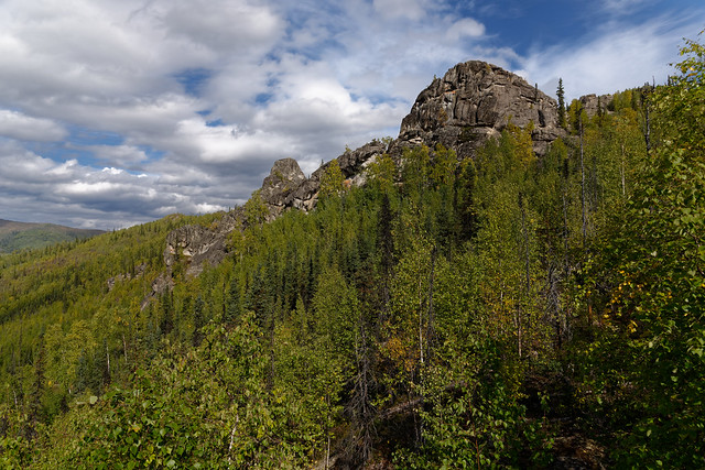 Taking Two Foot Drive to Hike Amongst the Mountains! (Chena River State Recreation Area)