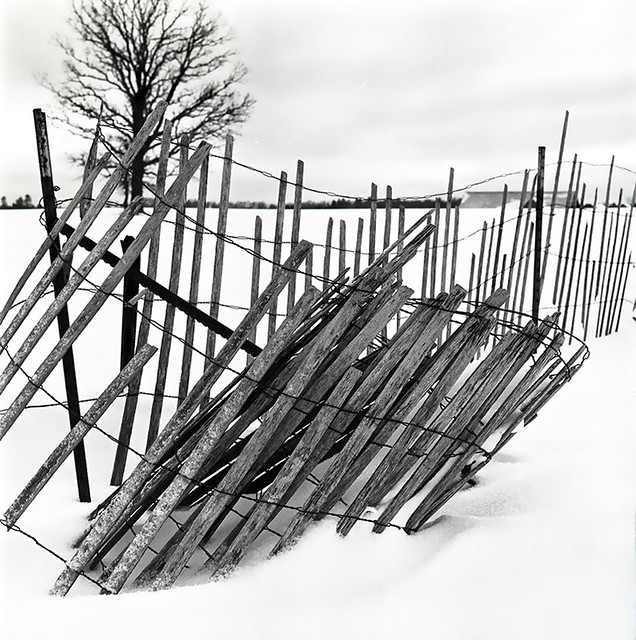 Snow Fence, Ontonagon County, MI