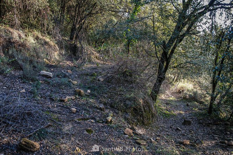 Sendero de Pererols al volcán del Cairat