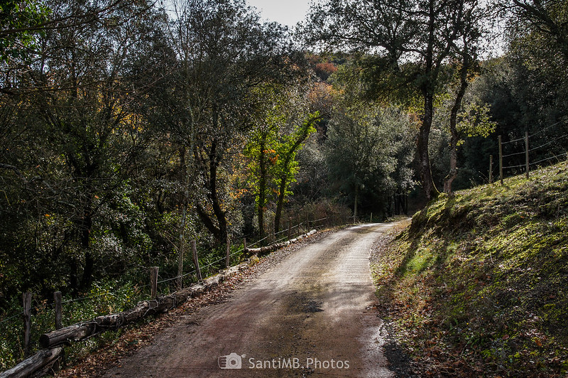 Camino de Cal Gall a Repassot