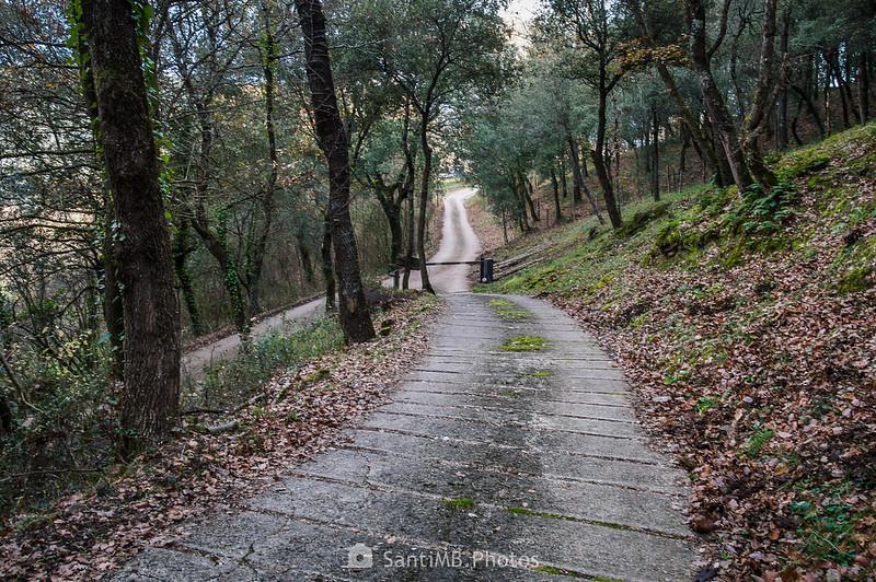 Camino de Cal Gall llegando al camino de Molera