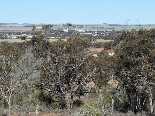 Kimba / a view to the township from Whites Knob Lookout, Eyre Peninsula South Australia