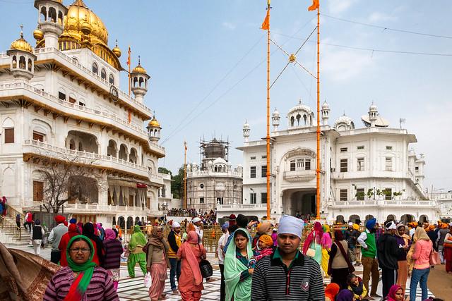 Amritsar 264 - Golden Temple - C