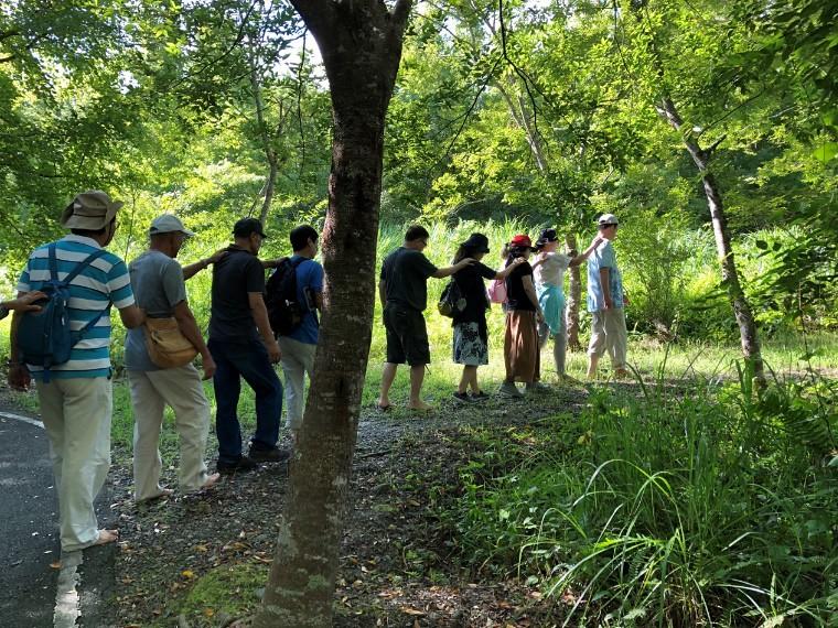 森林療癒活動拉進人與森林的關係