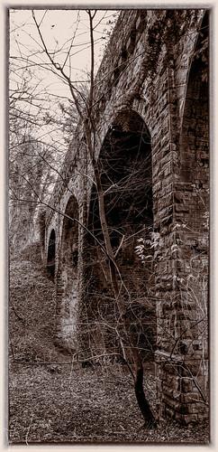 england art unitedkingdom coalville bw monochrome landscape lumix photography landscapes leicestershire grace panasonic photooftheday picoftheday bridge ruins railway priory dieu