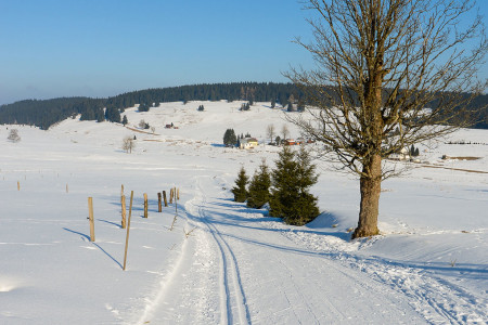 Západní Krušné hory: Krušnohorská lyžařská magistrála