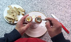 Boiled eggs & soldiers 272-366 (13-4656)