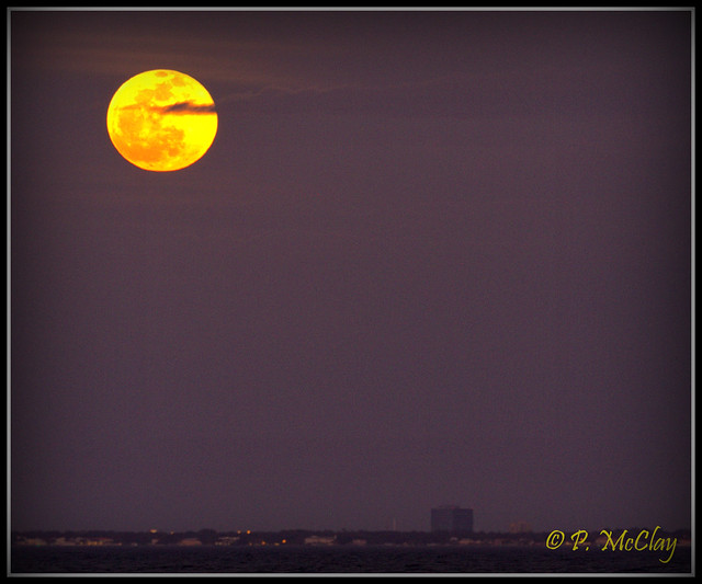 Moon Rise Over Tampa Bay