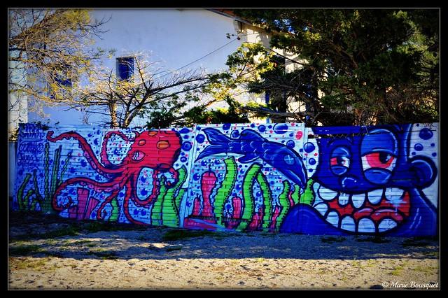 Graffitis sur un mur du Racou