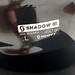 Lyžařská přilba Scott Shadow - fotka 1