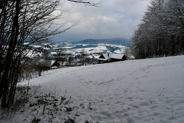 Low Beskid - Poland_5151