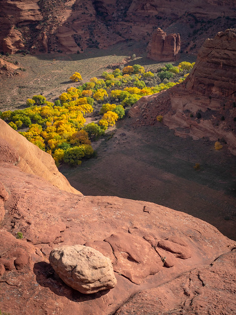 Autumn Edge.jpg
