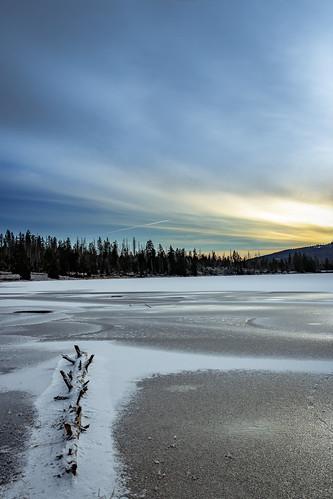 lake frozen ice tree trees landscape bluesky moody scenic snow sunrise