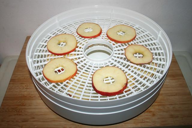 04 - Apfelscheiben in Dörrgerät platzieren / Site apple slices in dehydrator