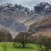 Hart Crag and Fairfield from Patterdale