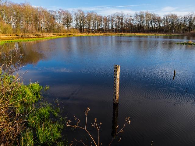 Naturschutz pur am Böttjer Moor - 2