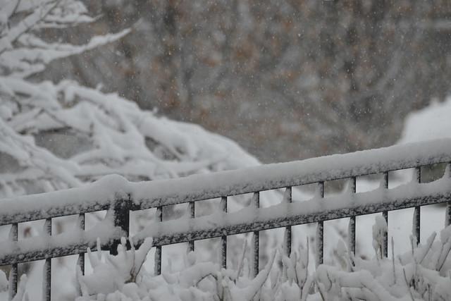 Winter returned!