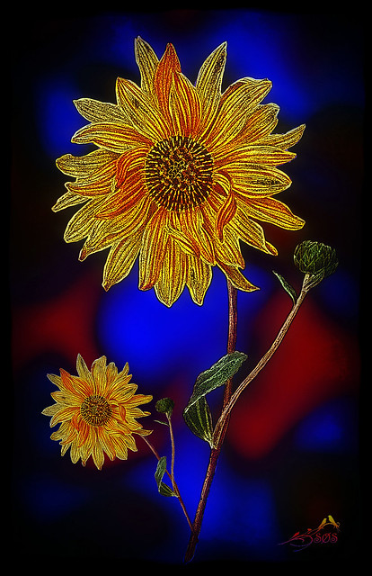 Sunflower manipulation