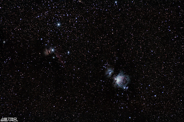 Orion, Flame and Horse Head Nebula