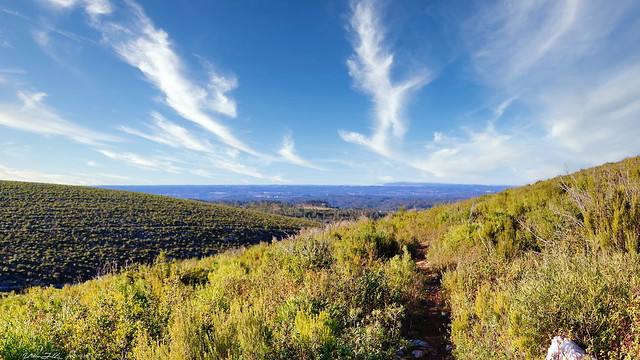 Sicó Trails  2017  -  N1605
