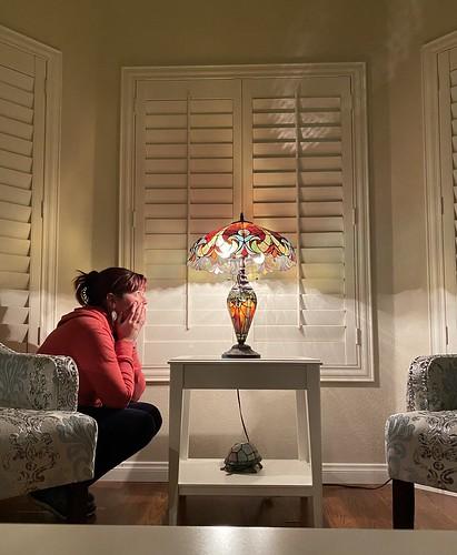 lighting apple lamp jen sad january livingroom blinds friday staged timer day17 demons tiffanylamp selftimed 365days 10secondtimer shotwithiphone iphone11 dougroad 300views 200views 400views