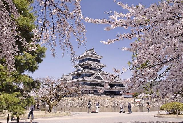 Matsumoto Castle in spring (松本城)