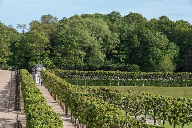 Jardins du château de Villandry (Indre-et-Loire, France)