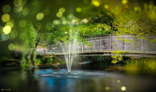 #Bridge - 7987
