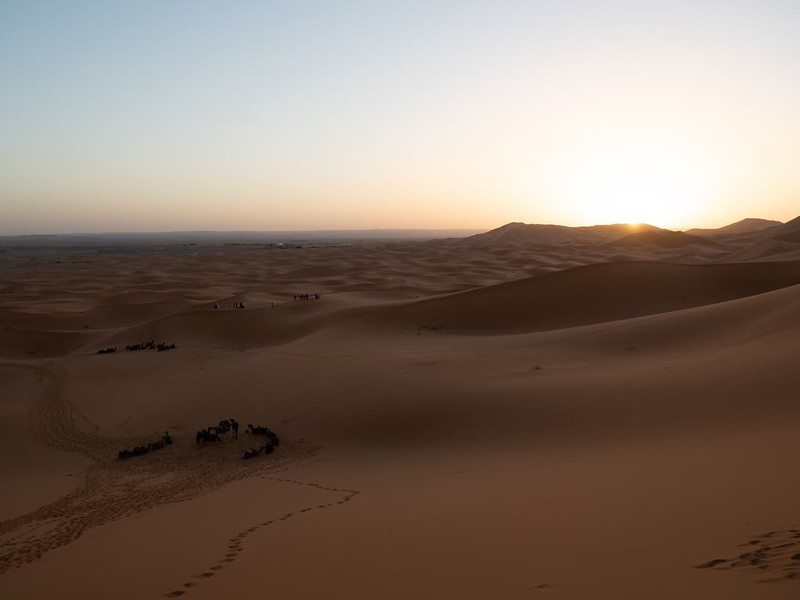 20200118_サハラ砂漠_20