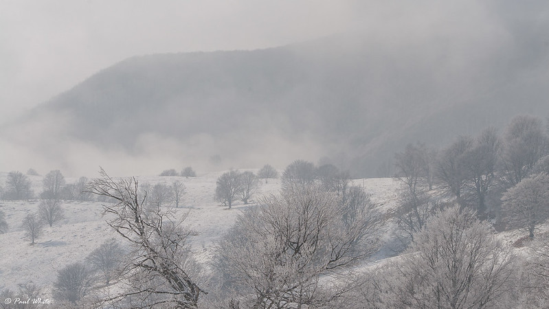 The deep freeze in Transylvania
