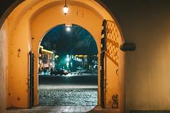 Gates | Kaunas #16/365