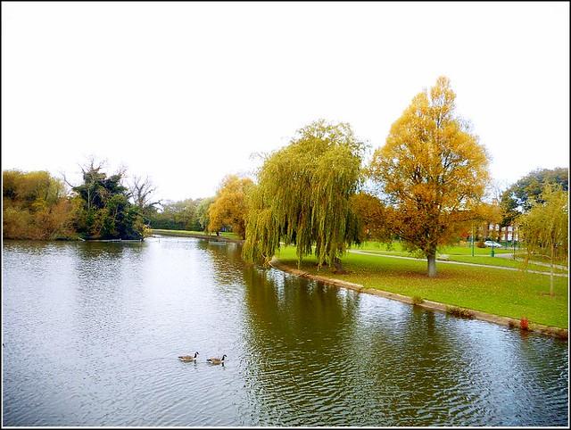 Lake View ...
