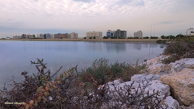 South Amwaj lake بحيــرة جنوب امــواج